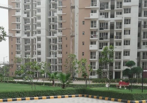 3BHK Penthouse in Noida